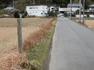 05naoko0007