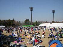 05sakura020